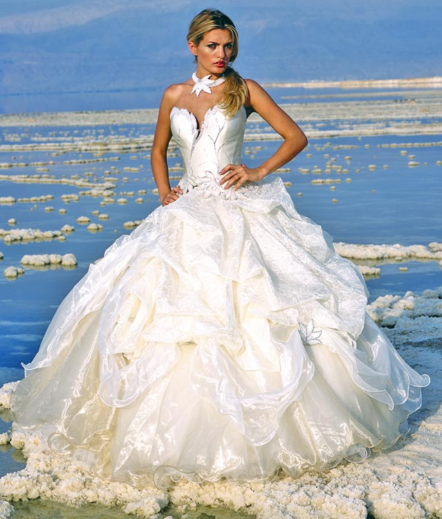 Lady panayota bridal gown for sale by my lady designs for Where to get my wedding dress preserved