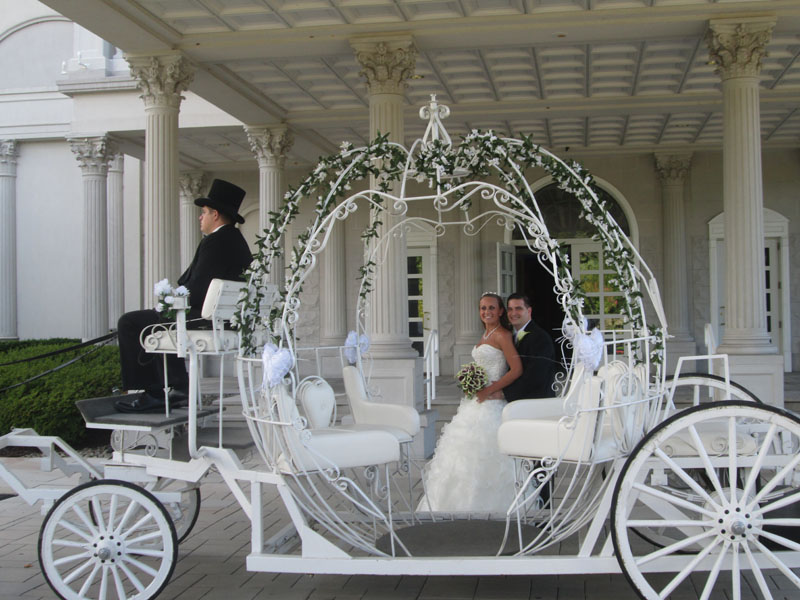Horse And Carriage Drawing Horse Cinderella Carriage