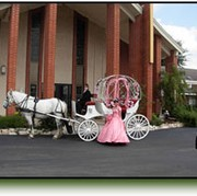 A to Z Events, Inc. – Horse Drawn Carriages - thumbnail image