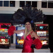 Casino Party Planners Illinois - thumbnail image
