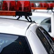Medina's Protective Services - thumbnail image