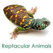 Reptiles, Pony Rides, Petting Zoos - thumbnail image