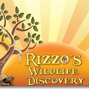 Rizzo's Wildlife Discovery Llc - thumbnail image